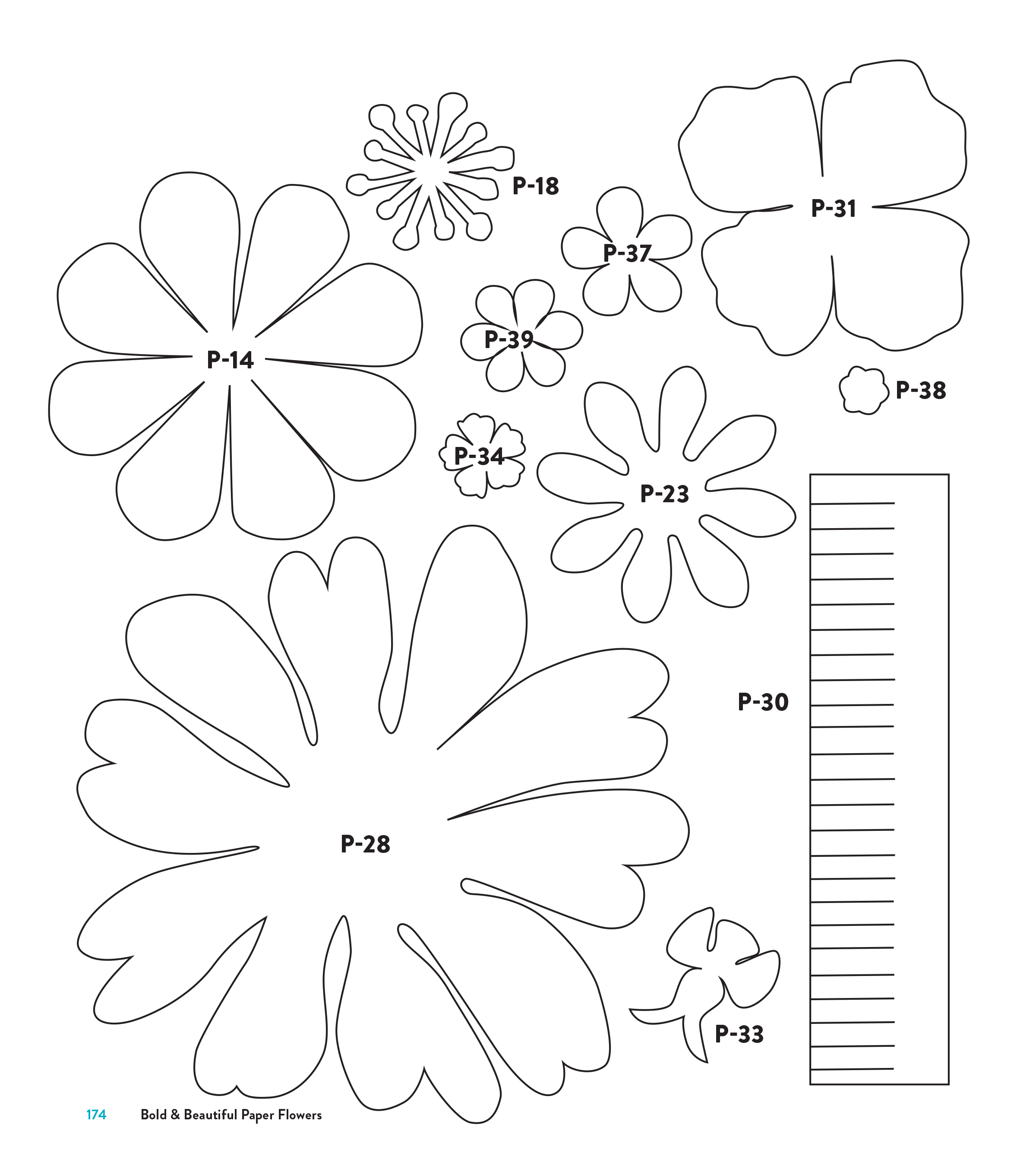 rose petal templates free.html